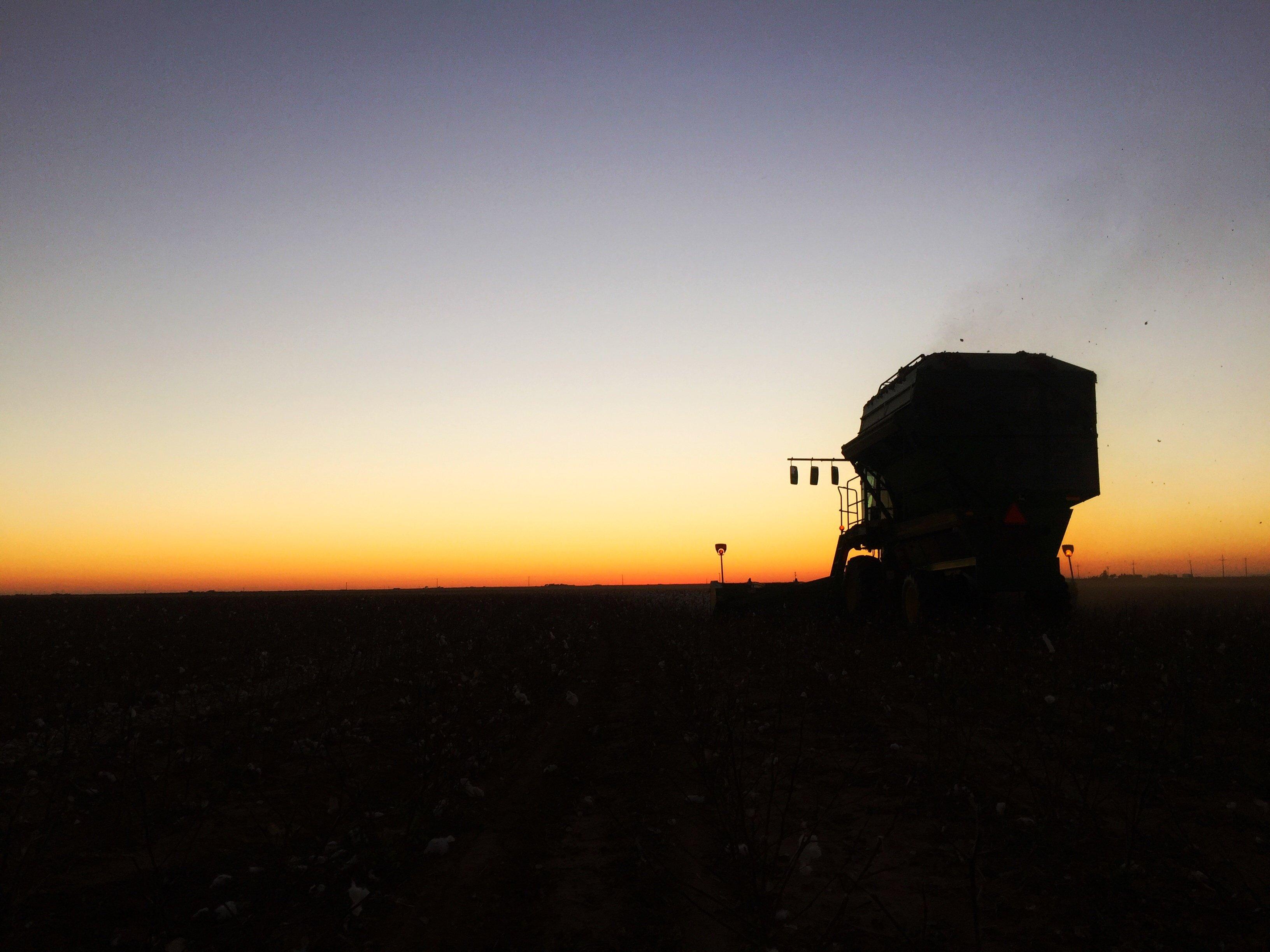 Sunset on the farm