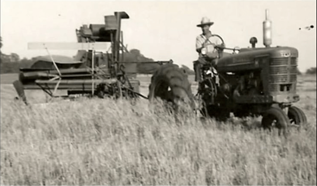 Historical photo of farmer harvesting