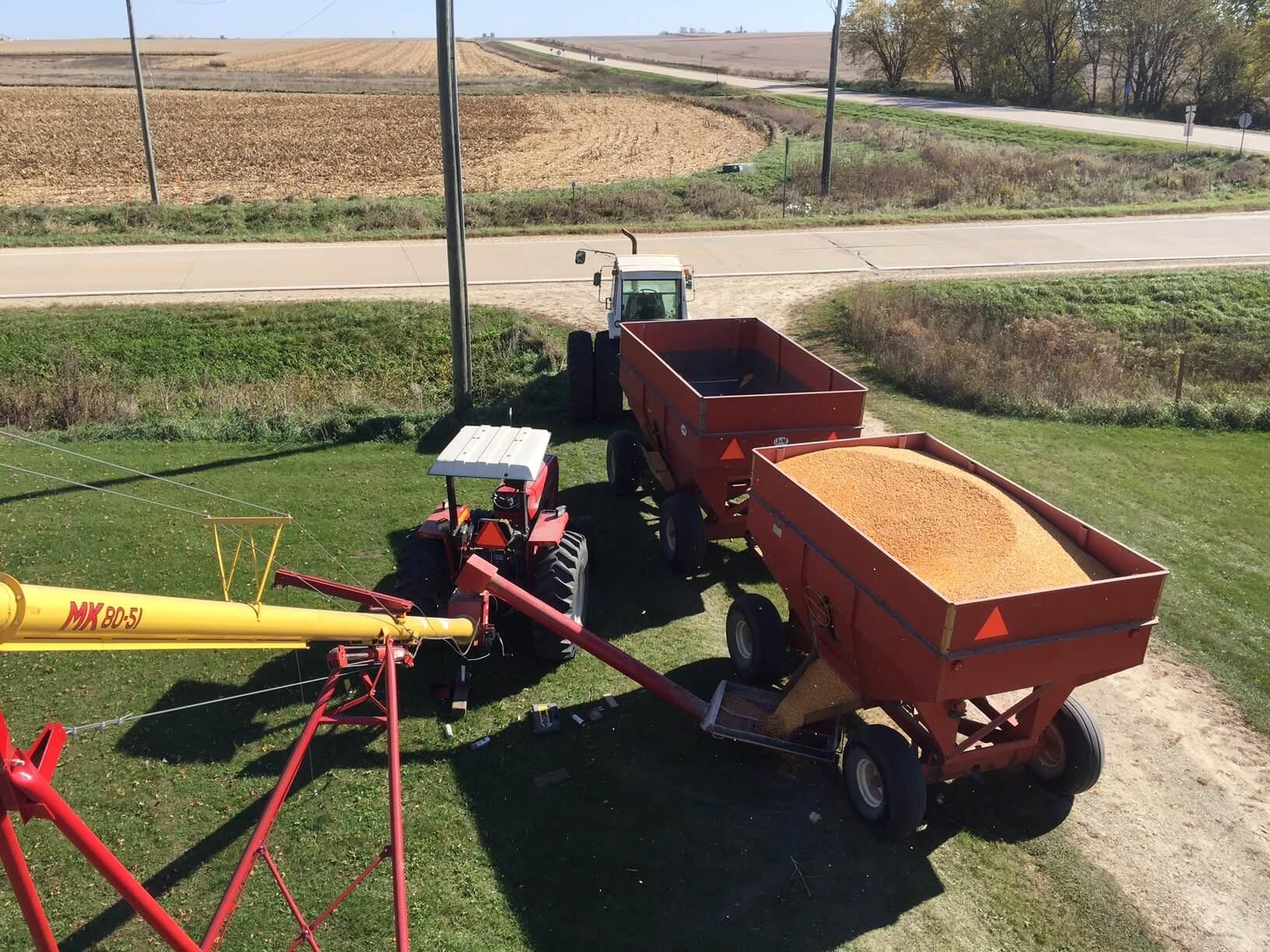 Harvest time on our farm