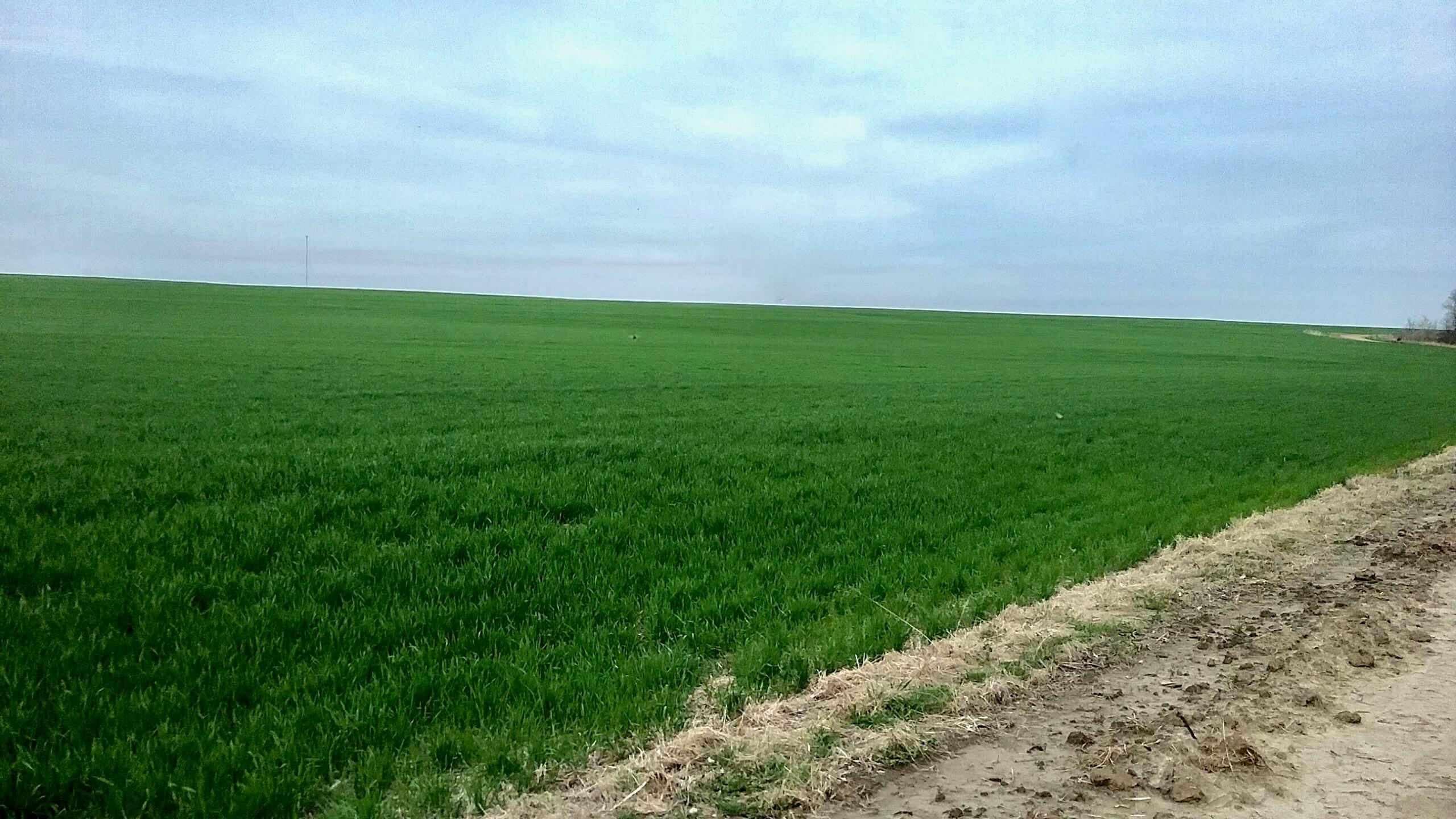 farm field in kansas