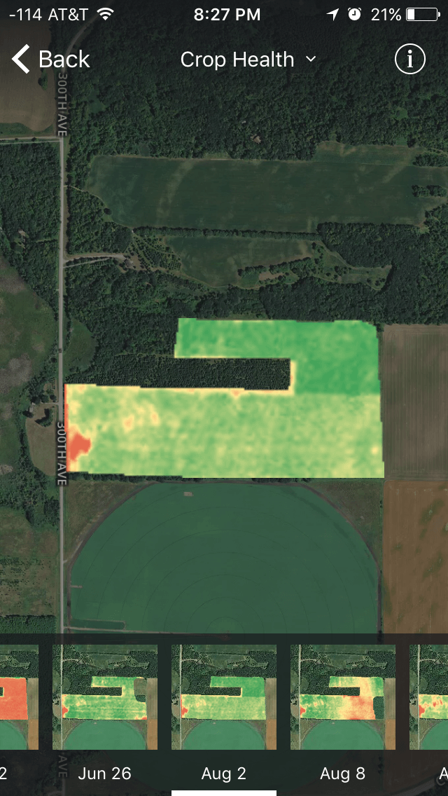 Crop Health imagery showing the grassy area that Mitch discovered in his corn field