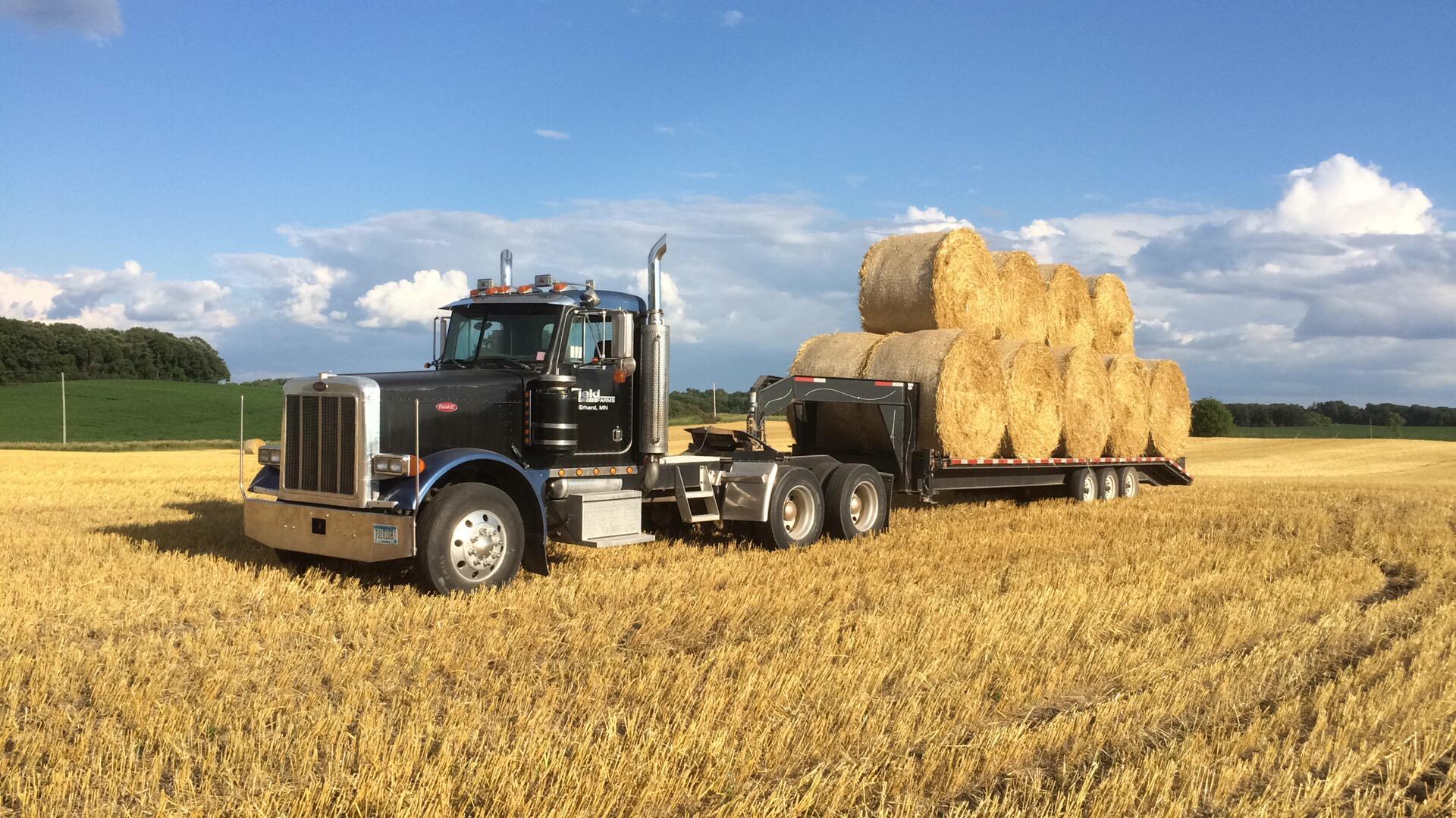 Hauling hay on Field Farms