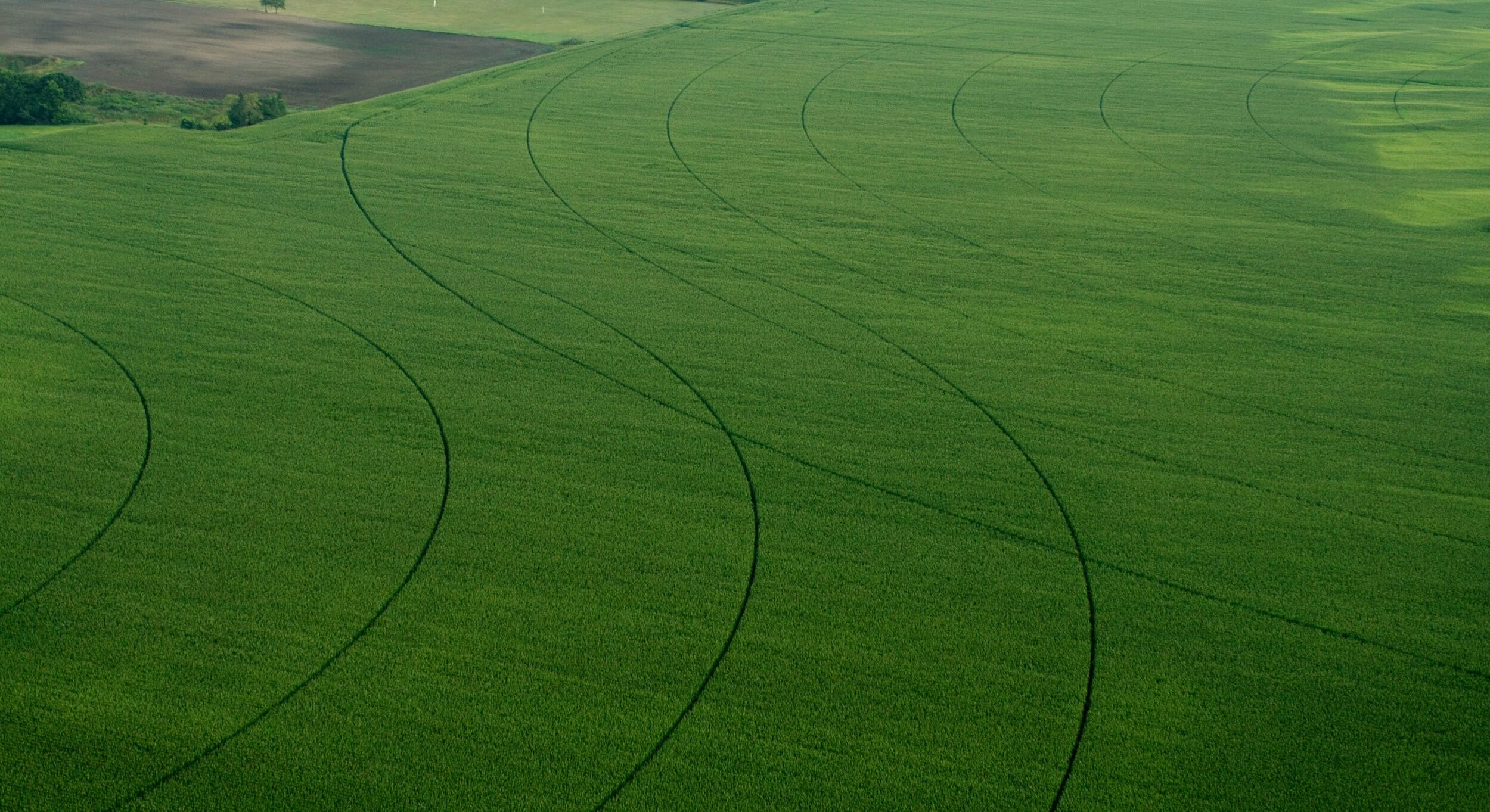 Aerial view of one of our fields