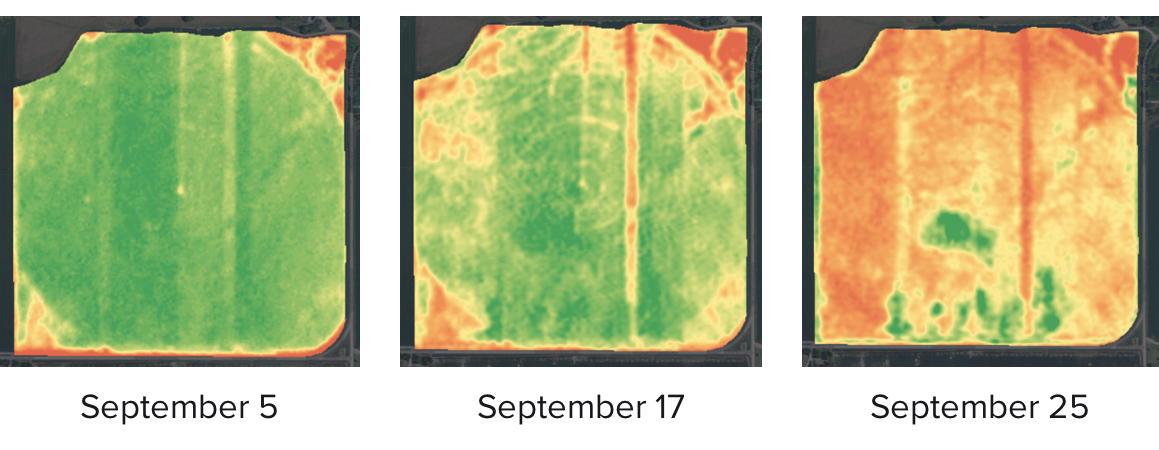 FarmLogs crop health imagery showing drydown