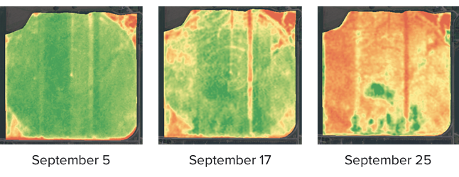 FarmLogs crop health imagery showing drydown